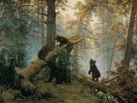 1920px-utro_v_sosnovom_lesu